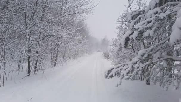 zasněžené silnici v lese, přírodní krajiny a backgrund