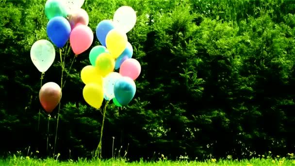 balónky-dekorace dětských prázdnin v přírodě v létě