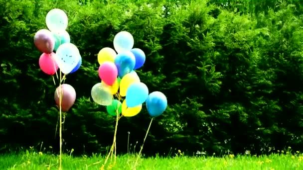 barevné balónky-dekorace dětských prázdnin v přírodě v létě