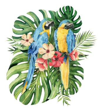 Print with beautiful watercolor parrots and tropical leaves. Tropics. Realistic tropical leaves. Tropical birds.  Isolated on white background stock vector