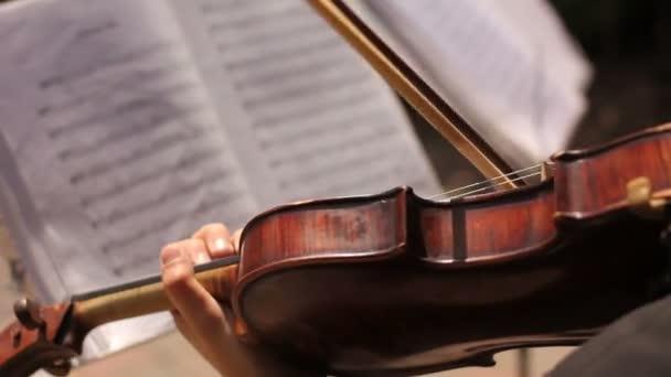 a jegyzetek háttérben hegedülni nő zenész