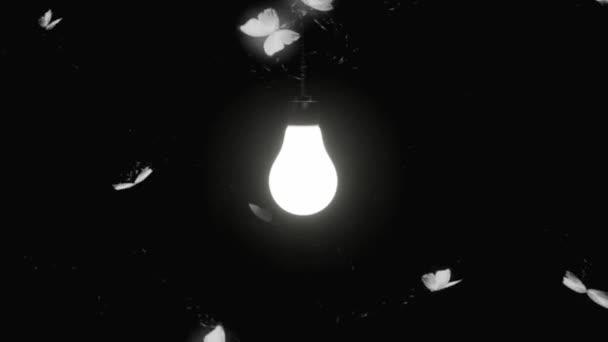 Glühbirne hängt und Insekt fliegt um die Glühbirne dunkelschwarzen Hintergrund. Beflügelte Termiten Fliegen um die Lampe 3D Nahtlose Animationsfilme.