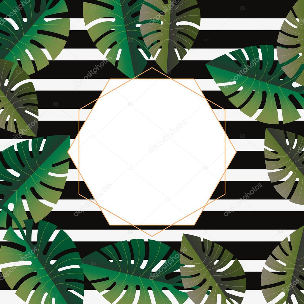 label template stripes leaves tropical summer background