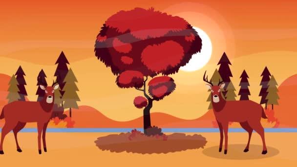 hello őszi animáció rénszarvas pár erdei jelenet