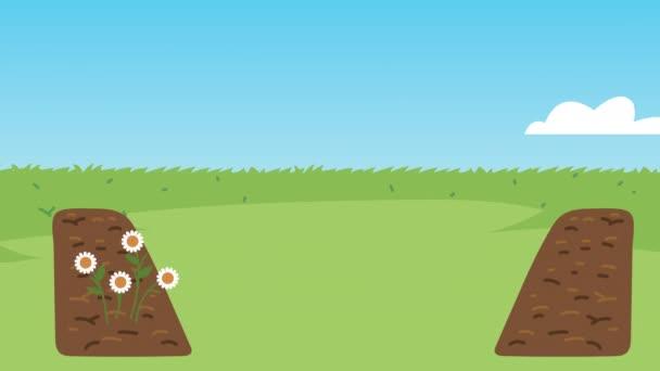 zahradní animace s dýní a plotem