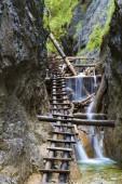 Národní park Slovenský ráj, Slovensko. Horský kaňon