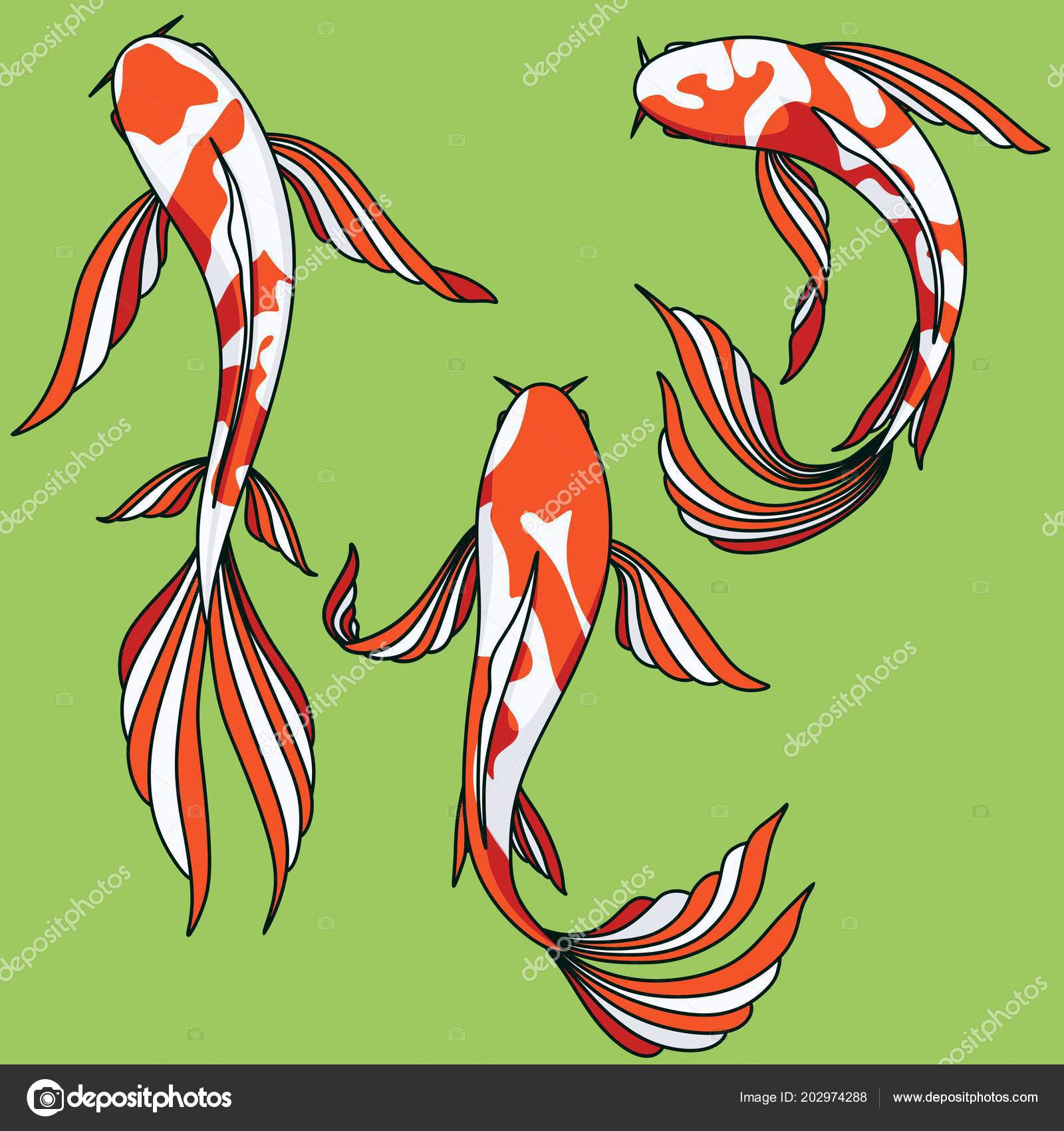 Koi Kapr Vektor Klip Umeni Sada Obrazky Kreslene Asijske Ryby