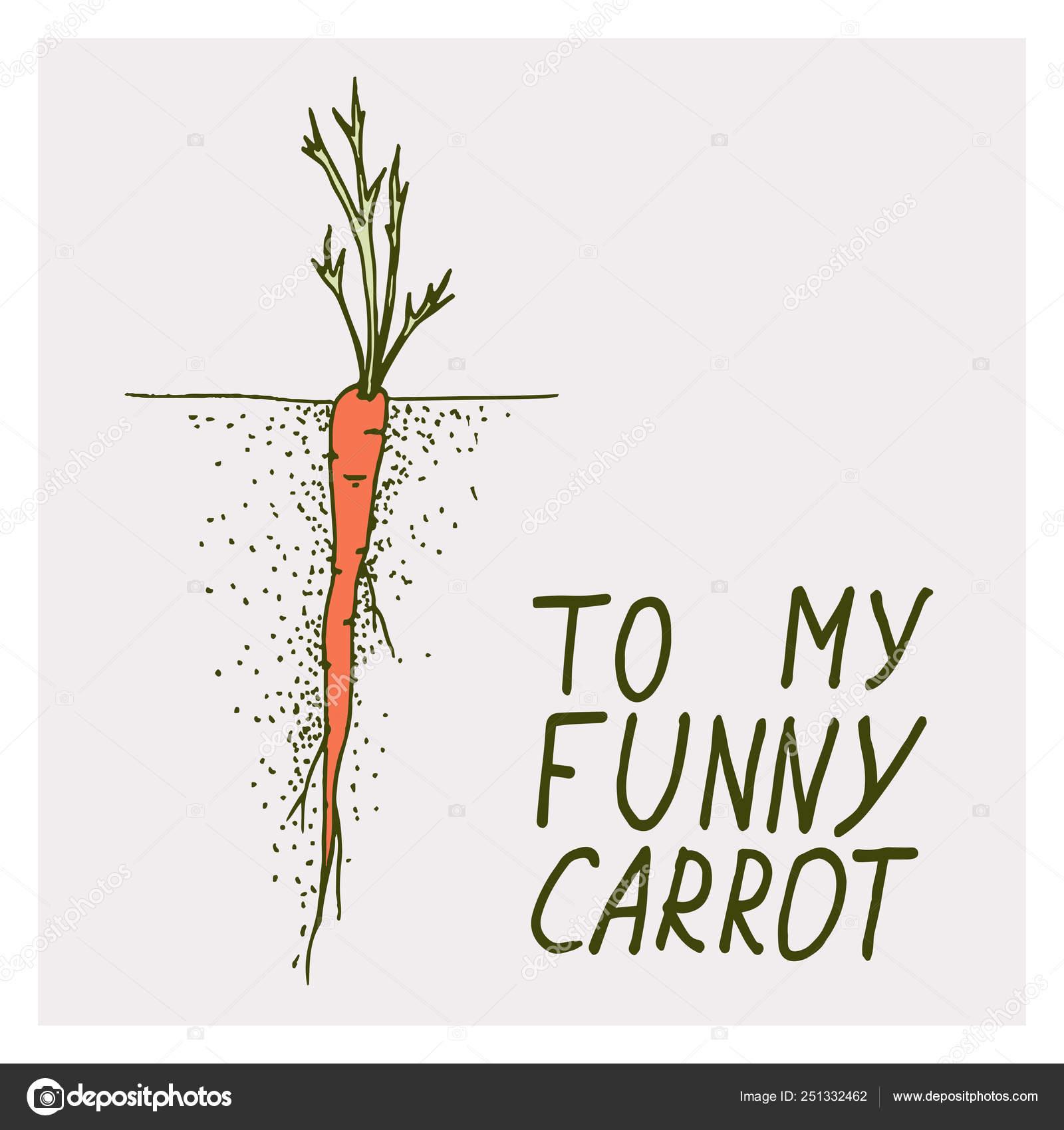 Cartões Com Cenoura E Frase Da Motivação A Minha Cenoura
