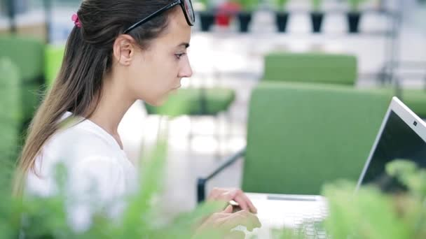 Concentrated young beautiful businesswoman working on laptop in bright modern office. Business or freelance concept