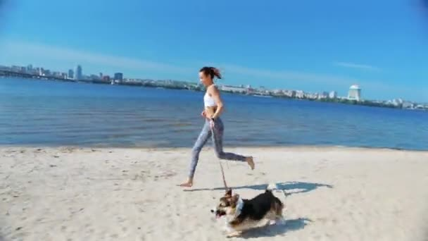 beautiful young slim athletic woman walking with cute tricolor Welsh Corgi dog on the sand beach at sunny morning.