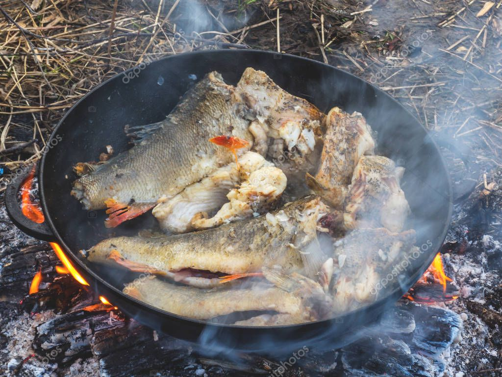 Fresh river fish fried on a fire on a cast iron pan in nature