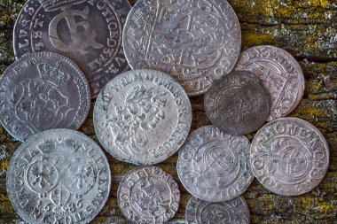 old money of the Grand Duchy of Lithuania, Poland, Belarus, tymp, coins, metal, retro style, selective approach,  top vie