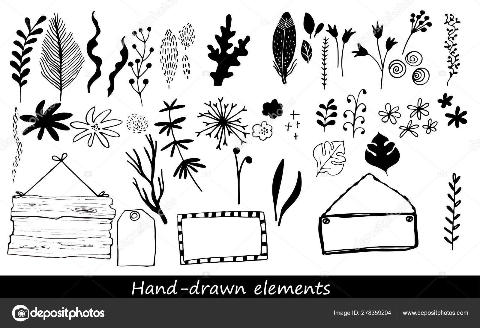 Colección de flores dibujadas a mano y plantas — Vector de stock ...