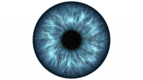 Blue human eye dilating and contracting. Very detailed extreme close-up of iris and pupil.