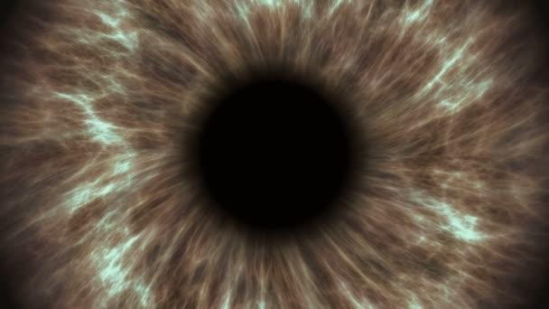 braunes menschliches Auge, das sich erweitert und zusammenzieht. sehr detaillierte extreme Nahaufnahme von Iris und Pupille.