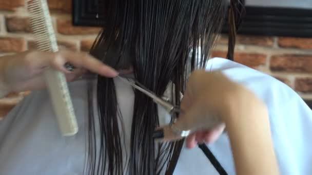 Vértes kéz asszony Borbély képzett fodrász fodrászat frizura ügyfél fiatal nő így. Olló és a fésű a stylist: