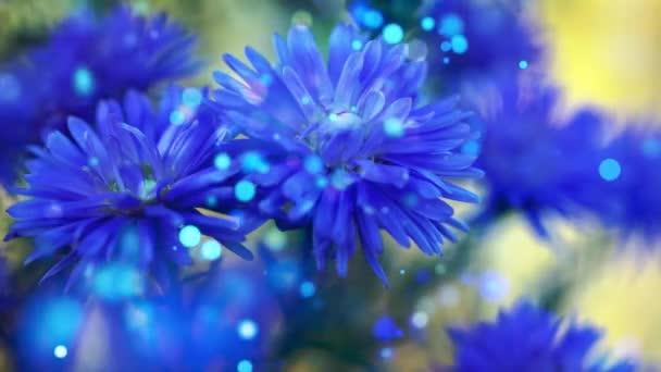 blue cornflowers flowers a stream of luminous particles, a cycle of a stream of luminous particles. light effects moving and flexible lines in abstract style.