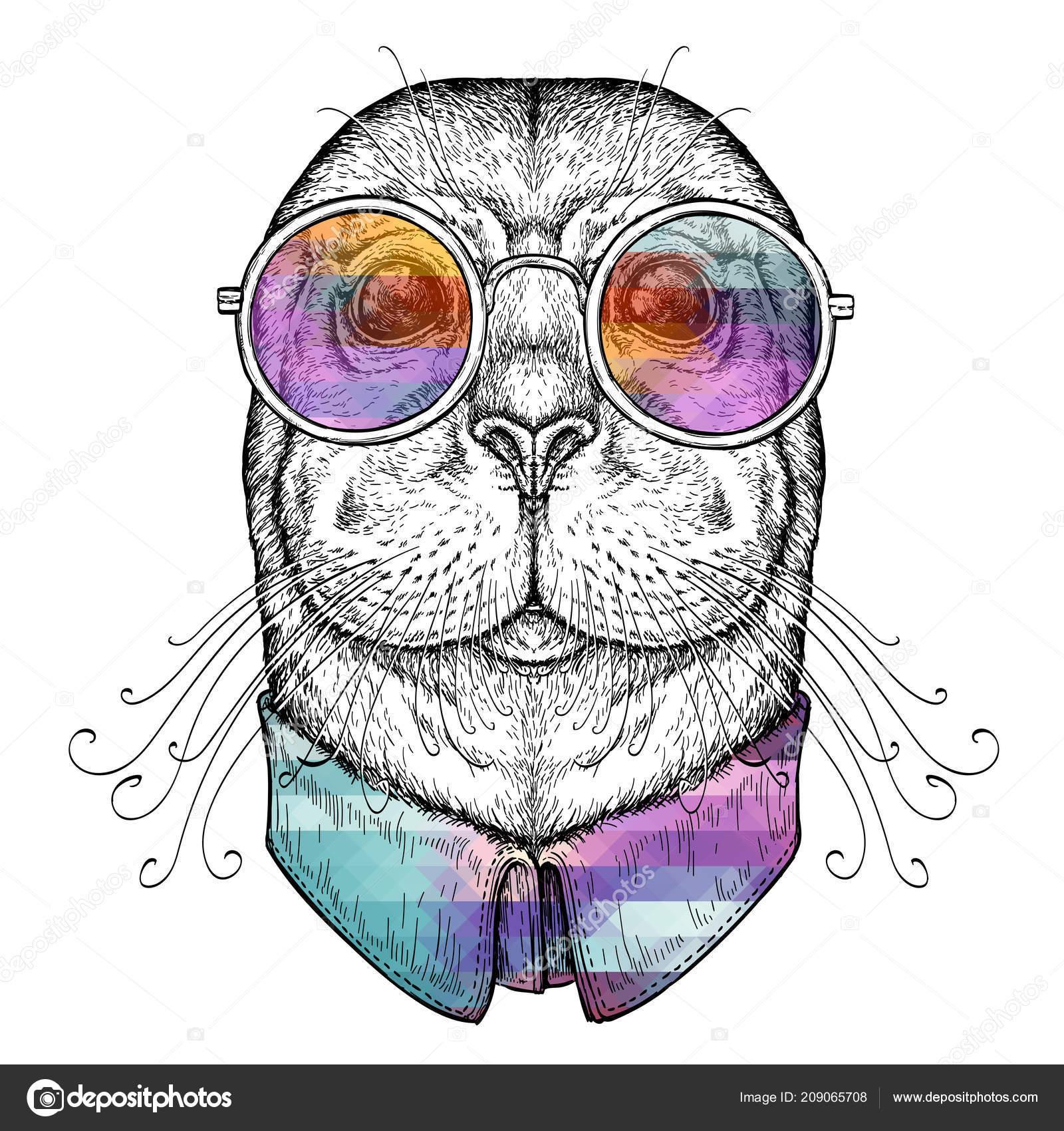 6c8b2b1c30 Χέρι Συρμένο Πορτρέτο Του Αστεία Σφραγίδα Ποτήρια Εικονογράφηση Διάνυσμα  Που — Διανυσματικό Αρχείο