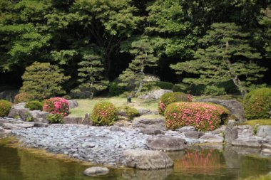 Picturesque landscape in japanese garden with trees and a creek locus amoenus in bright sunlight in Fukuoka