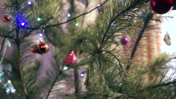 Closed For Christmas 2021 Purple Ornements Pics Concept Theme New Year Christmas 2021 Close Pine Tree Home Video By C Sergeychel74 Stock Footage 395158498