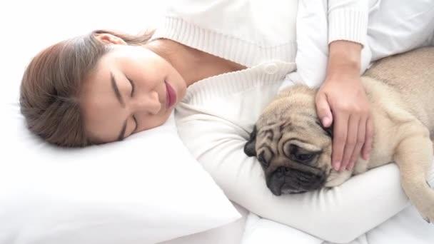 nő aludni kutya mopsz fajta az ágyban a hálószobában, kisállat és tulajdonos koncepció