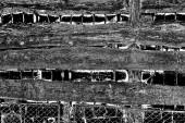 Abstrakter Holzgrund. Schwarz- und Weißtöne