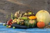 Autumn still life of vegetables on a wooden background. Harvest in autumn. Thanksgiving. Blue wooden table decorated with pumpkins, patissons, corn and other vegetables