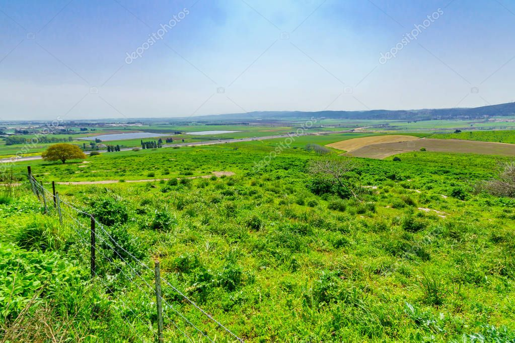 Landscape of Jezreel Valley, from Shekh Abrek hill
