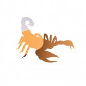 dvojitá expozice škorpióna a pouště