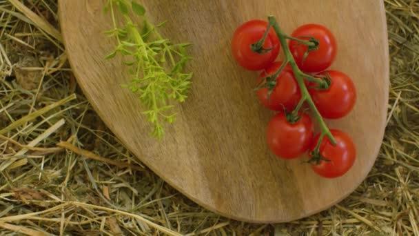 Reife Tomaten und Camembert