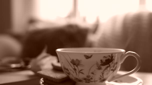 Hot coffee with steam on table with sun light, Scene cozy and relaxing at home by the window in a sunny day on spring or summer morning with cup of tea with blurry sofa next to window in sepia tone