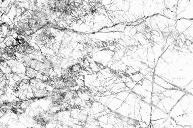White Abstract Background Marble Surface