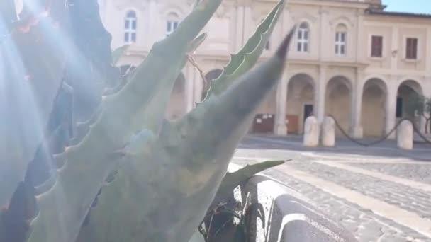 terni, italy augusztus 04 2020: chiesa del duomo di terni nella parte storica