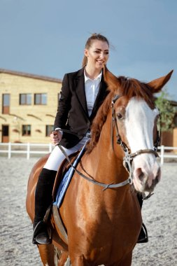 Rider elegant woman riding her horse outside