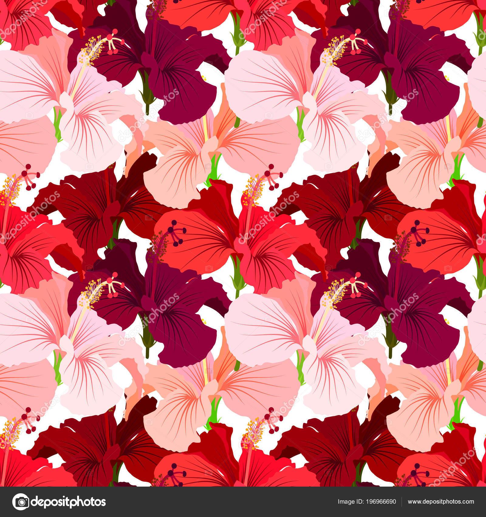 Impression De Fond Belle Jungle Florale Transparente Fond De Fleurs