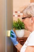 Senior Seniorin in Schutzhandschuhe mit Schwamm und wischen Duschkabine im Badezimmer, Konzept der Hausreinigung und häuslichen Pflichten