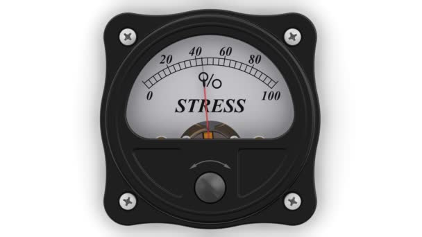 The stress indicator in action. The analog indicator is showing the level of the STRESS in percentages. Footage video