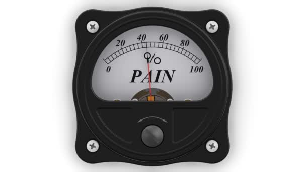 The pain indicator in action. The analog indicator is showing the level of the PAIN in percentages. Footage video
