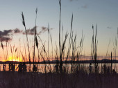 Fotografie zwei Vorderräder des Fahrrads gegen den Sonnenuntergang im See und salzigen Schaum am Ufer