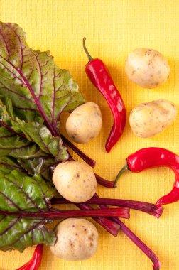 """Картина, постер, плакат, фотообои """"овощи на желтом фоне: картофель, красный перец, свекла листья"""", артикул 403255154"""