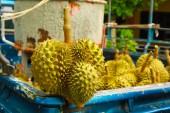 ovoce Durian několika druhů stromů, patřící do rodu Durio