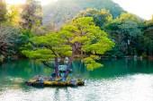 Zahradní jezírko s kamene japonském stylu