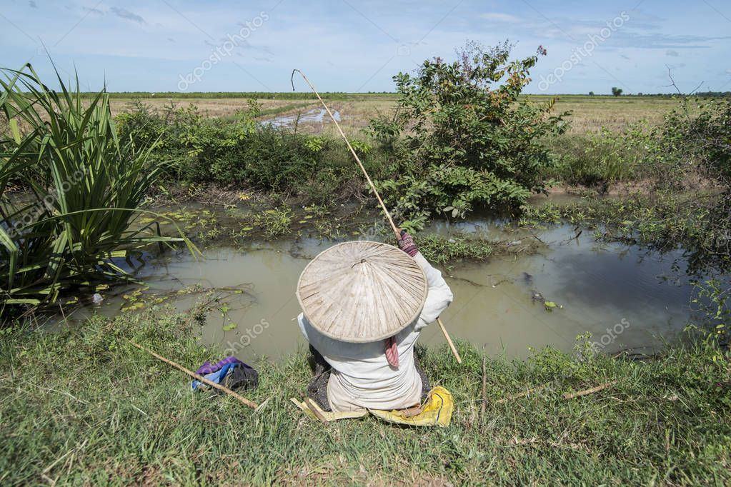 Woman is fishing at a water Khmer Management System and canal in the fields and landscape near the city of Kampong Thom of Cambodia