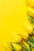 yellow tulips and paper on yellow background with space for your text