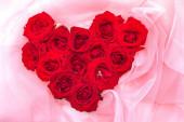 schöne rote Rosen auf rosa Hintergrund