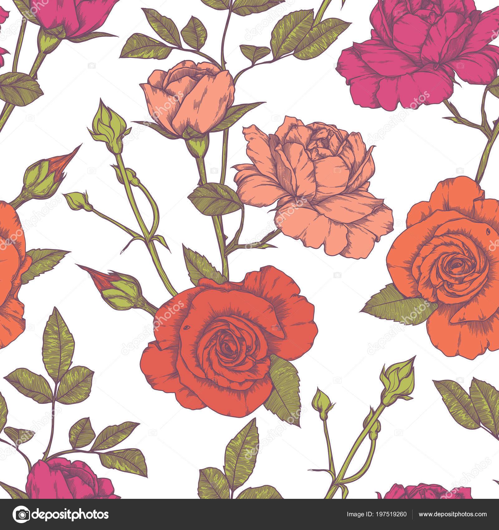 Patron Transparente Con Diseno De Rosas Vintage Vector De Stock - Diseos-de-rosas