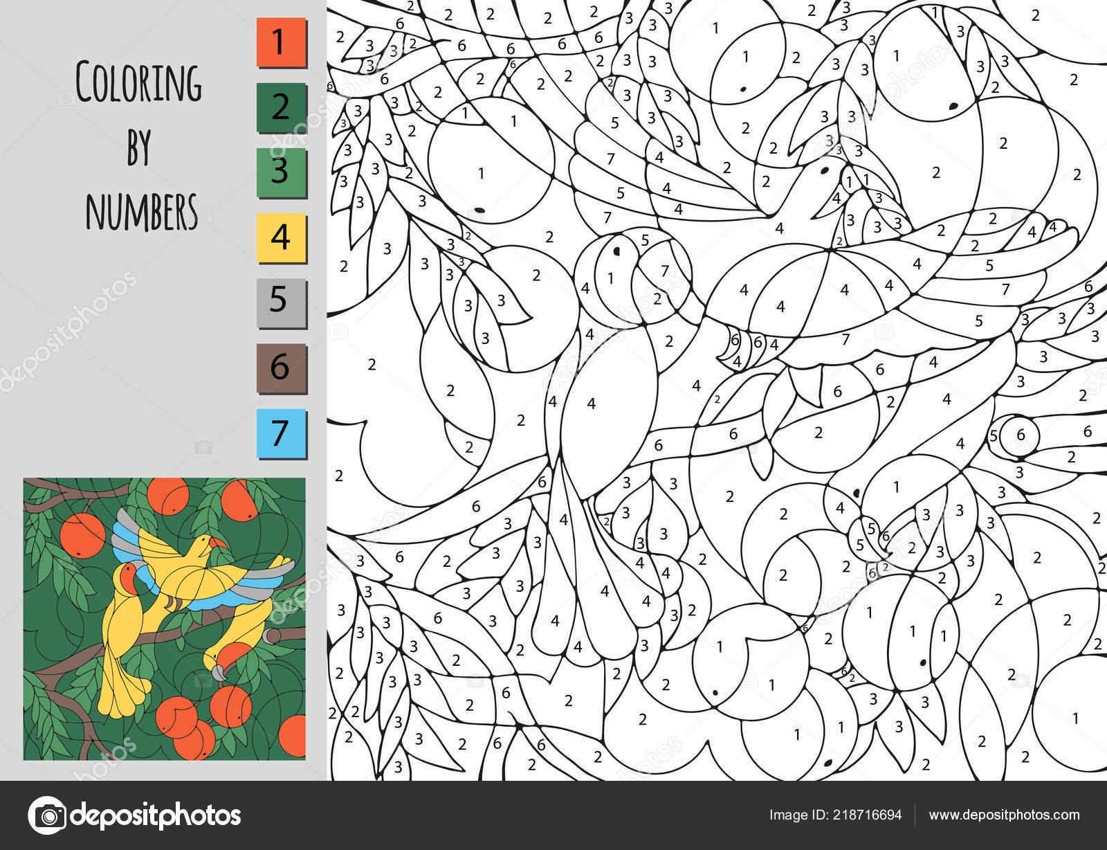 Para Colorear Por Número Educación Para Los Niños Reto Para Vector