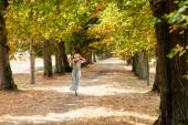 Gyönyörű, boldog fiatal lány szalmakalapban és hosszú ruhában szaladgál az erdőben egy kosárral a kezében. Nyáron vagy kora ősszel. Élénk meleg őszi színek. Visszanézés.