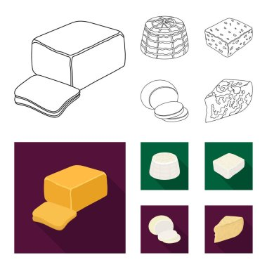 Mozzarella, feta, cheddar, ricotta.Different types of cheese set collection icons in outline,flat style vector symbol stock illustration web.