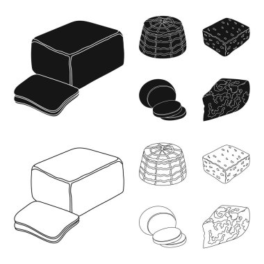 Mozzarella, feta, cheddar, ricotta.Different types of cheese set collection icons in black,outline style vector symbol stock illustration web.